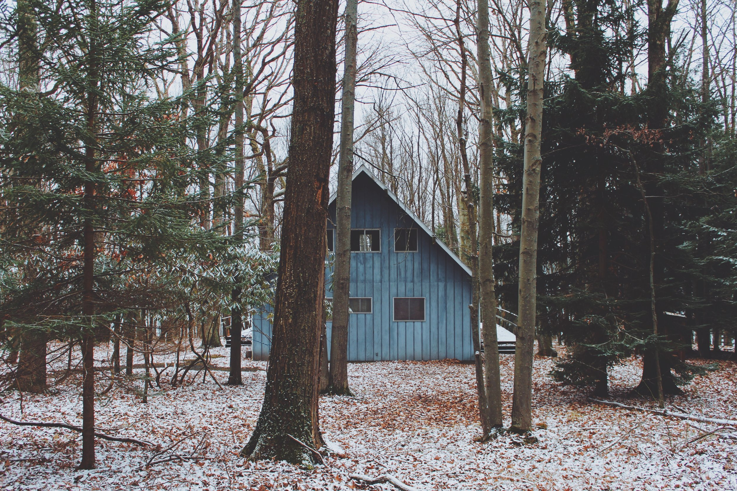 Snow Covered Blue Cabin - Western Maryland.jpg