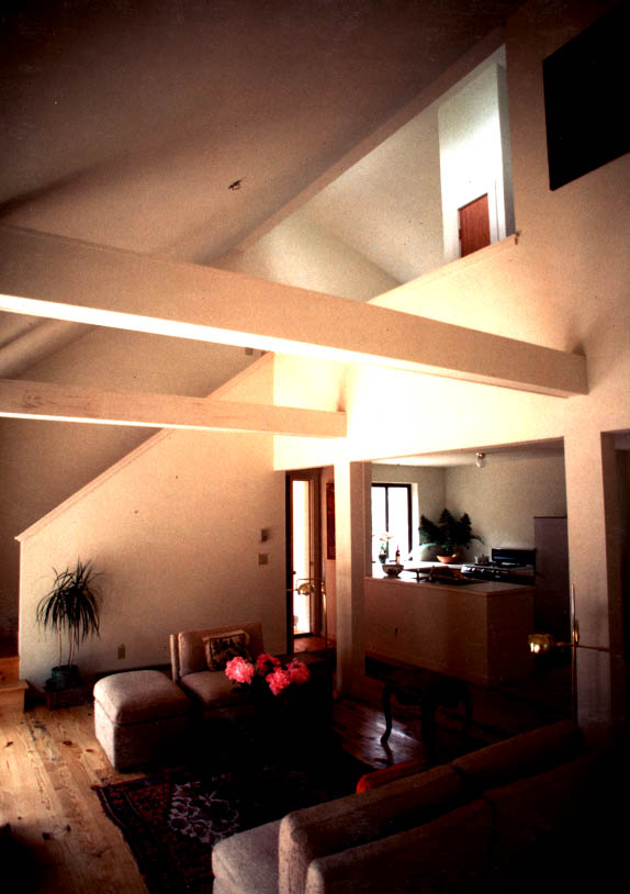 DianeSchecter InteriorColorPhoto LookingNW.jpg