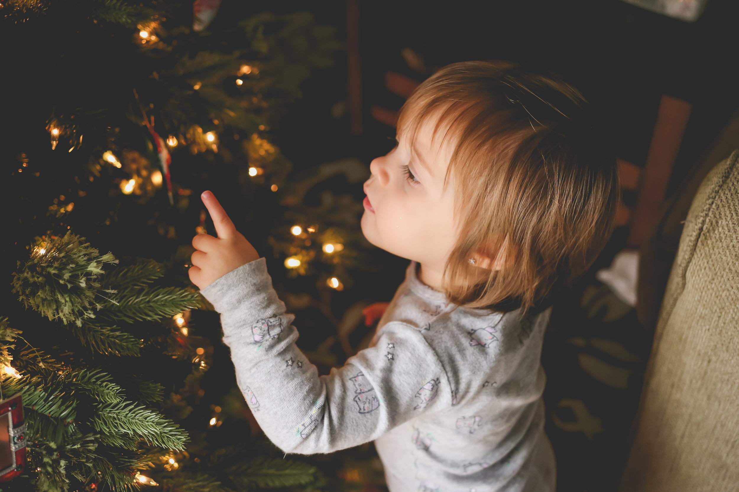 Toddler girl looking at the Christmas tree during an at home family photography session in Lehigh Valley, Pennsylvania.
