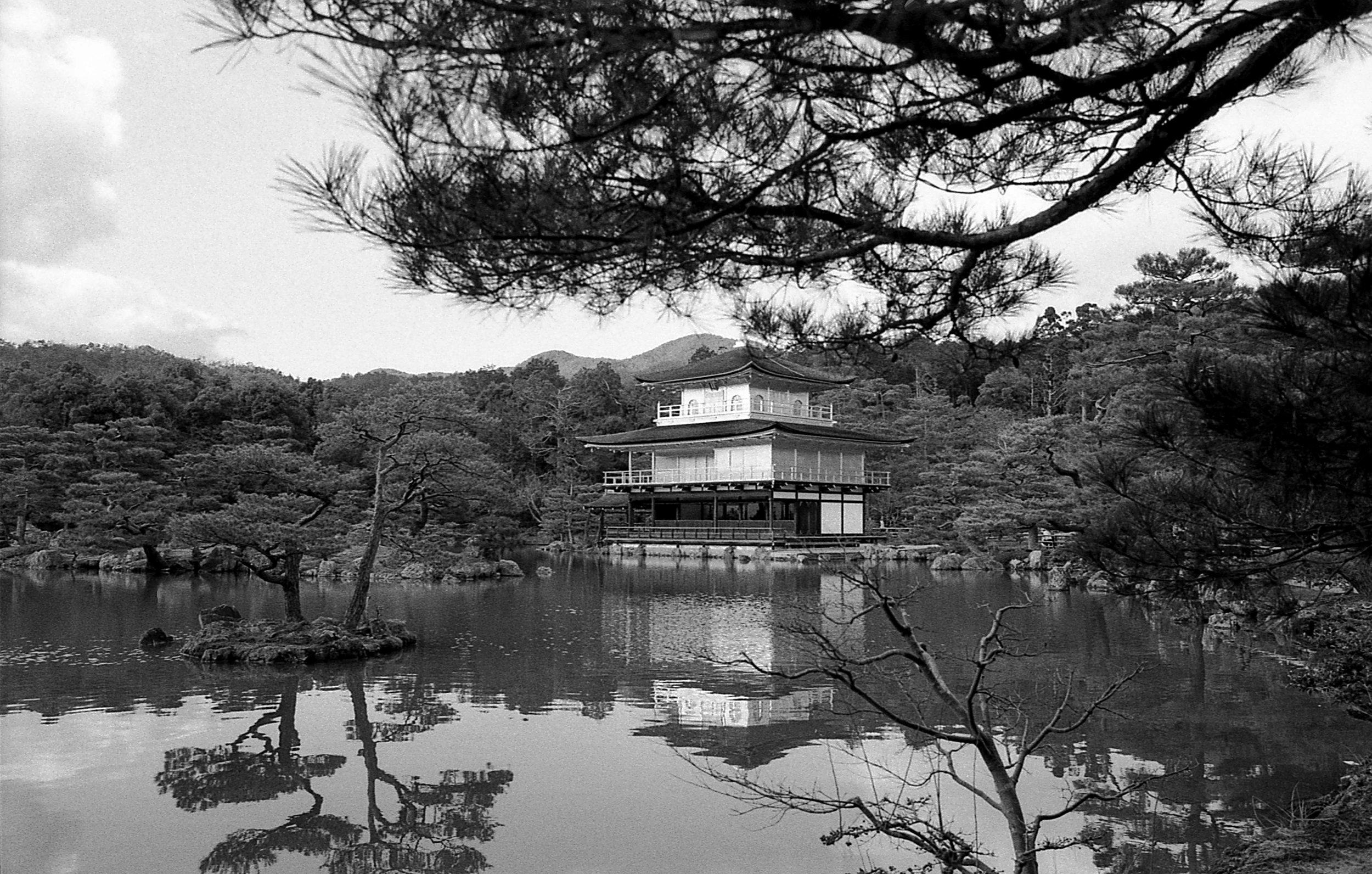 Japan // Arigatou gozaimasu