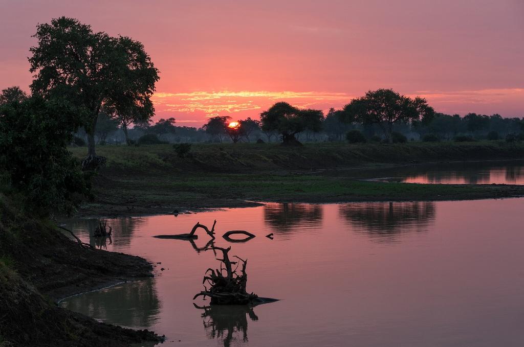 Mfuwe Sunrise (2).jpg