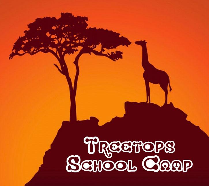 treetop-camp.jpg