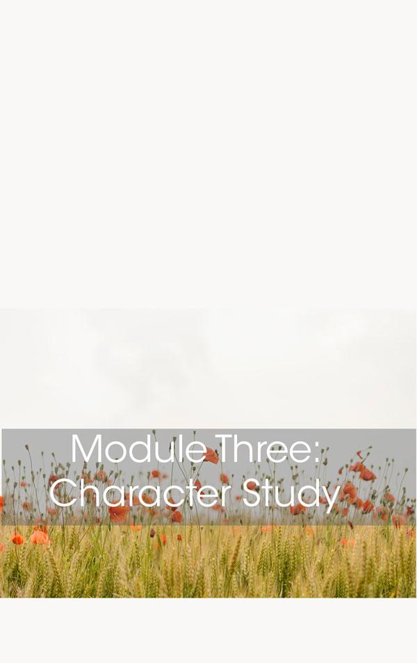 mod3_thumb.jpg