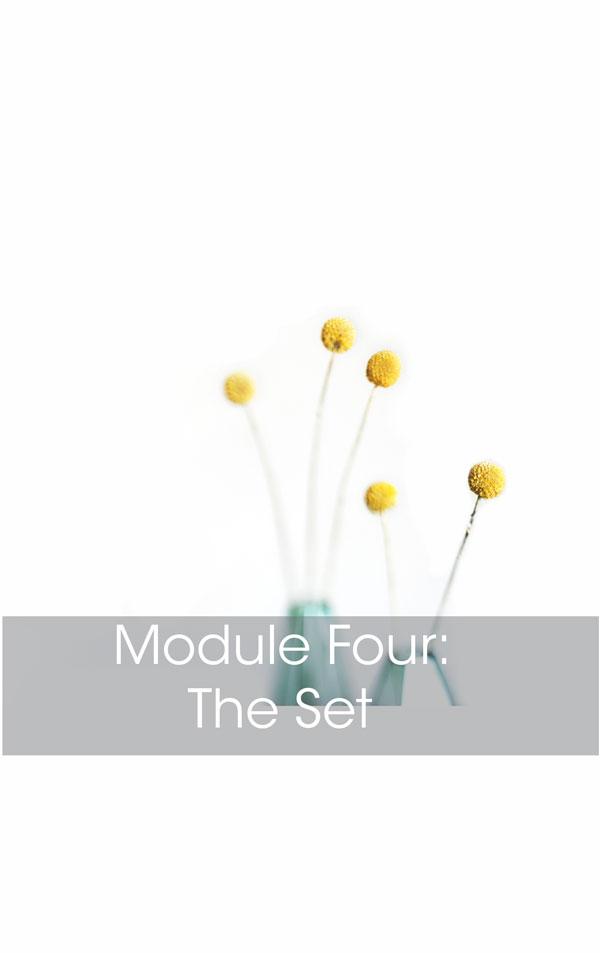 mod4_thumb.jpg