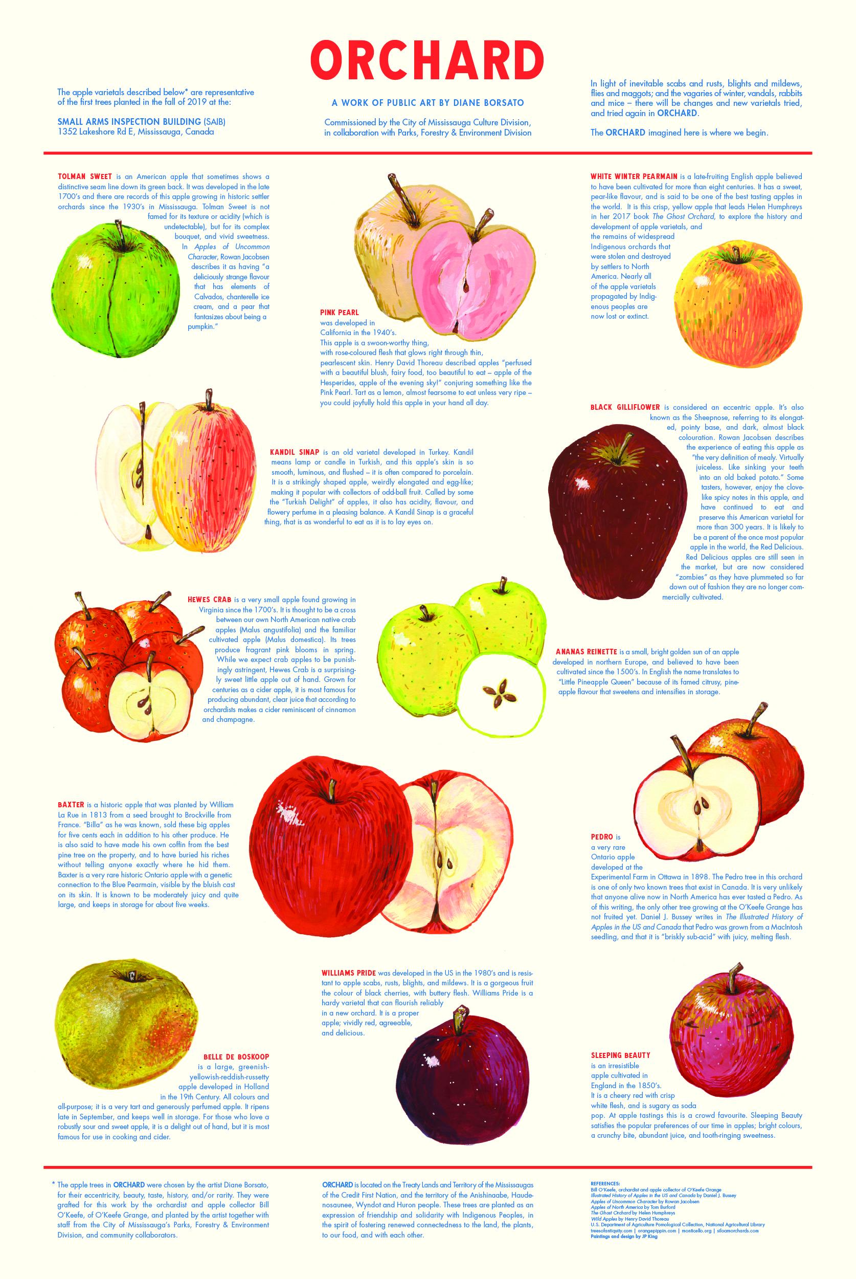 Orchard_Borsato_WEB_B.jpg