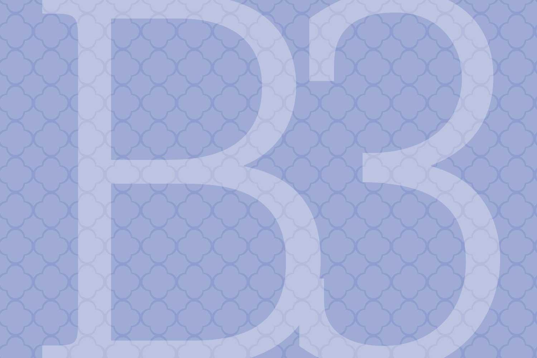 b3_1500x1000.jpg