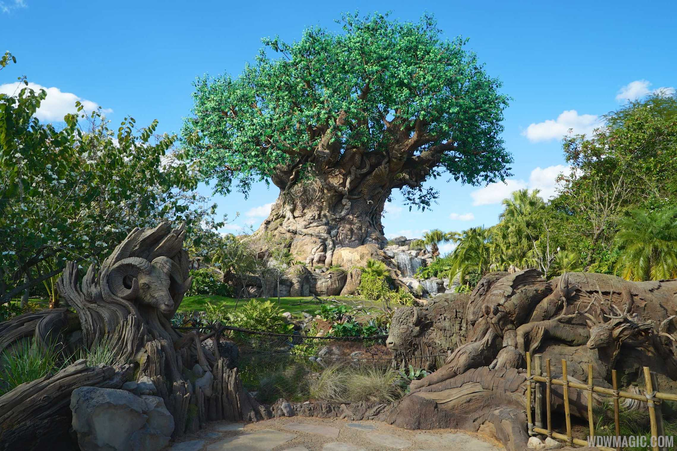 You Should Be Visiting Disney's Animal Kingdom