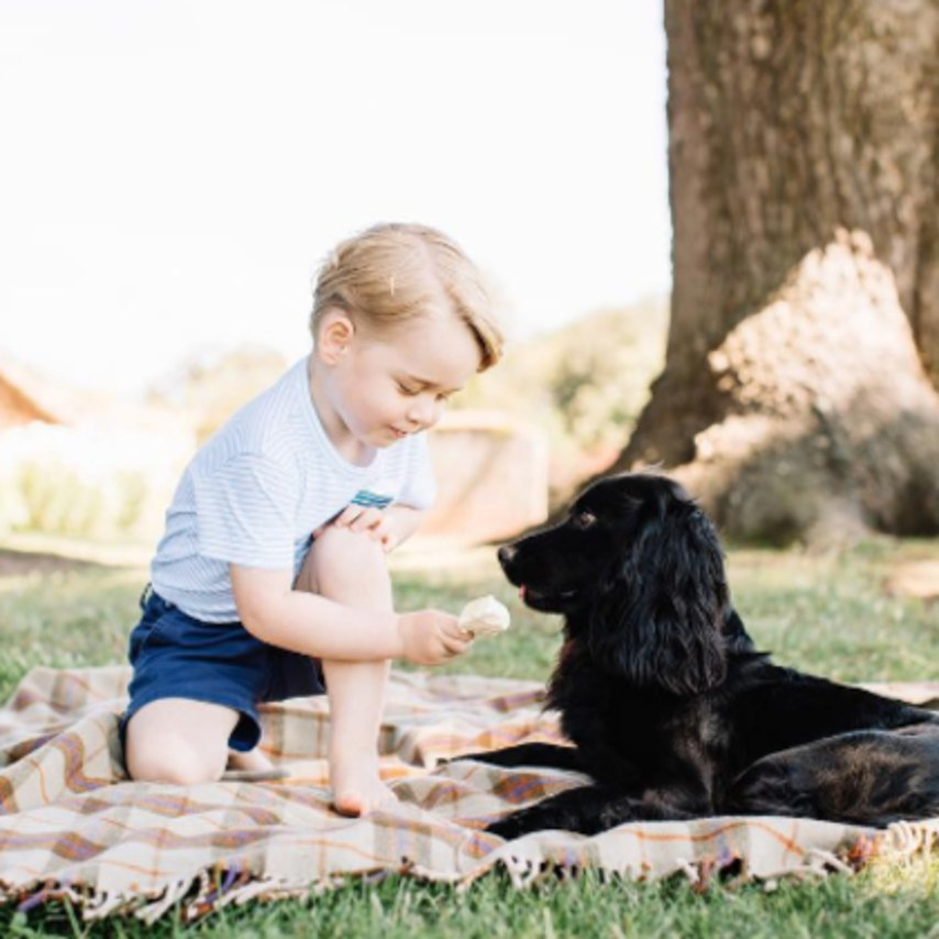 Prince George's Birthday Portraits Are Adorable
