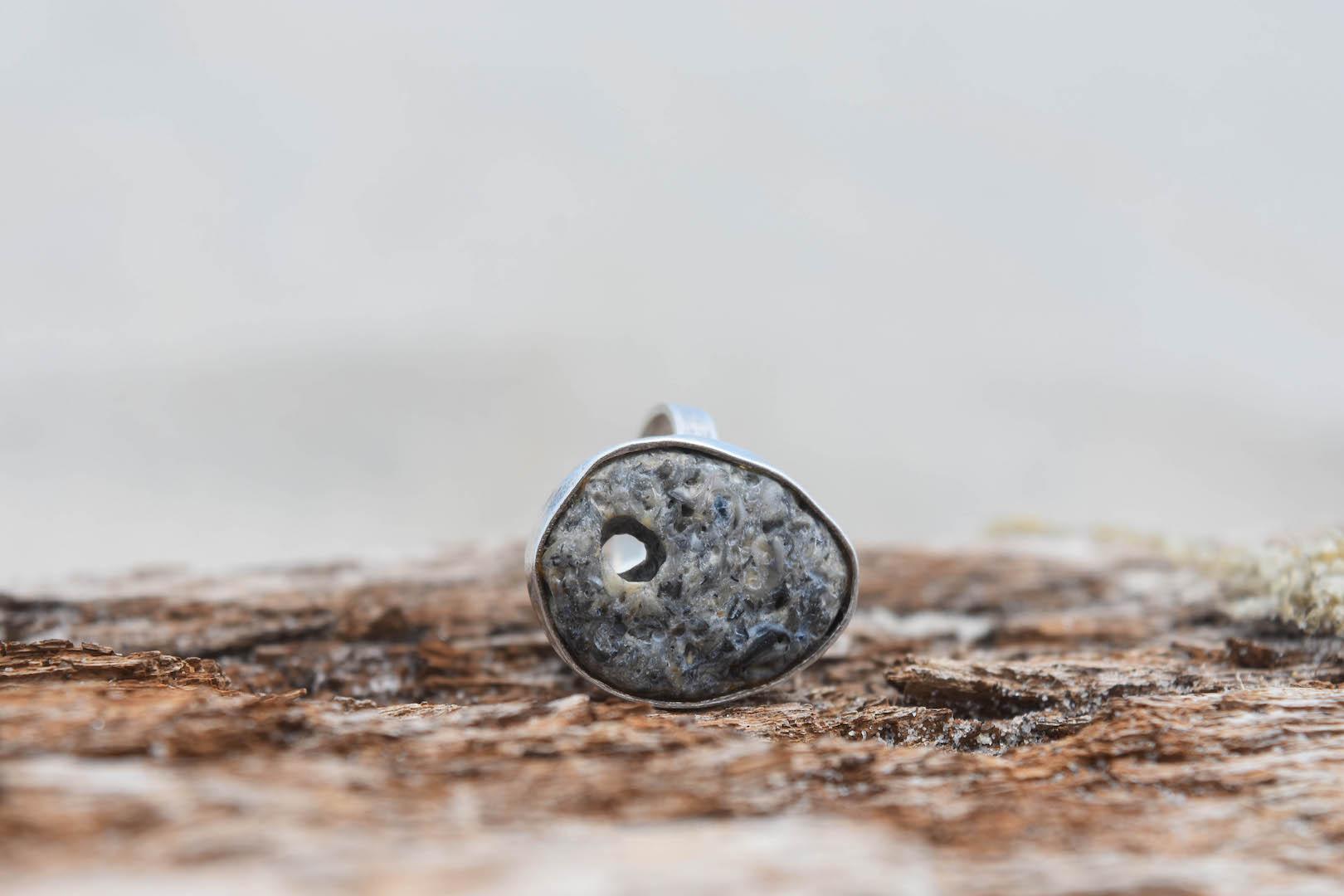 ring on bark.jpg