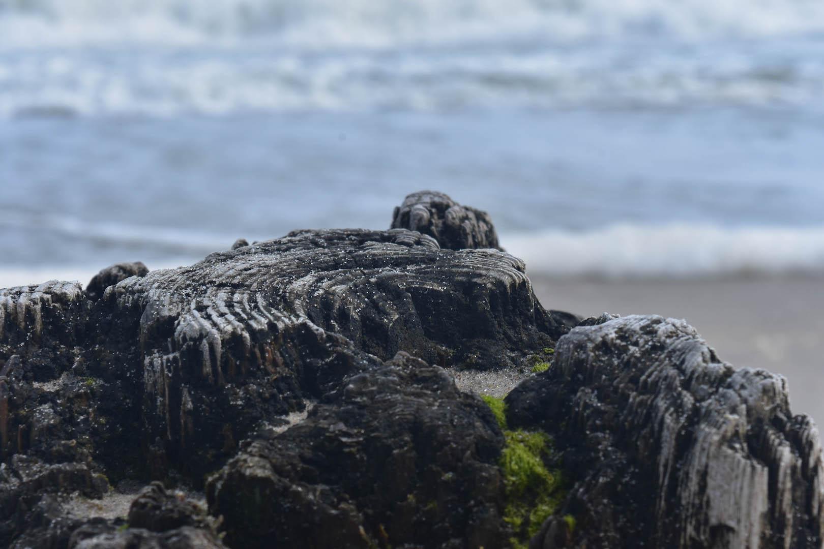 beach rock.jpg