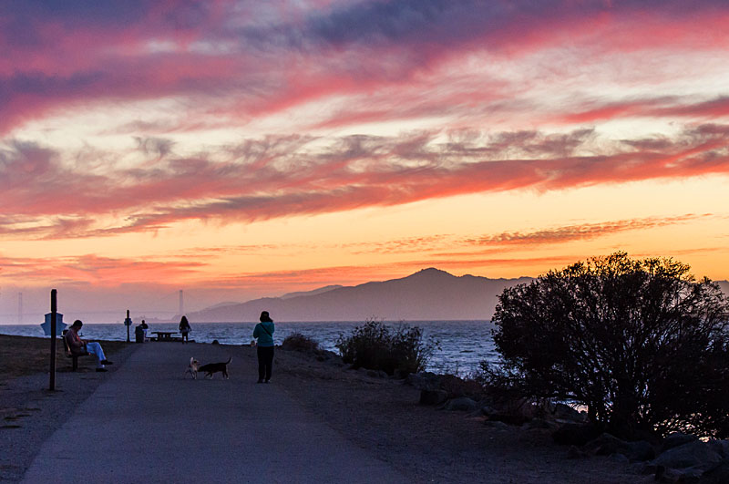 The Bay Trail at Point Isabel in Richmond. Photo:  SF Bay Trail