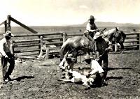 CS Ranch