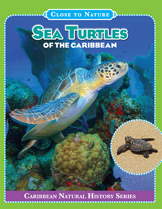 Sea-turtles-caribbean-cover-web.jpg