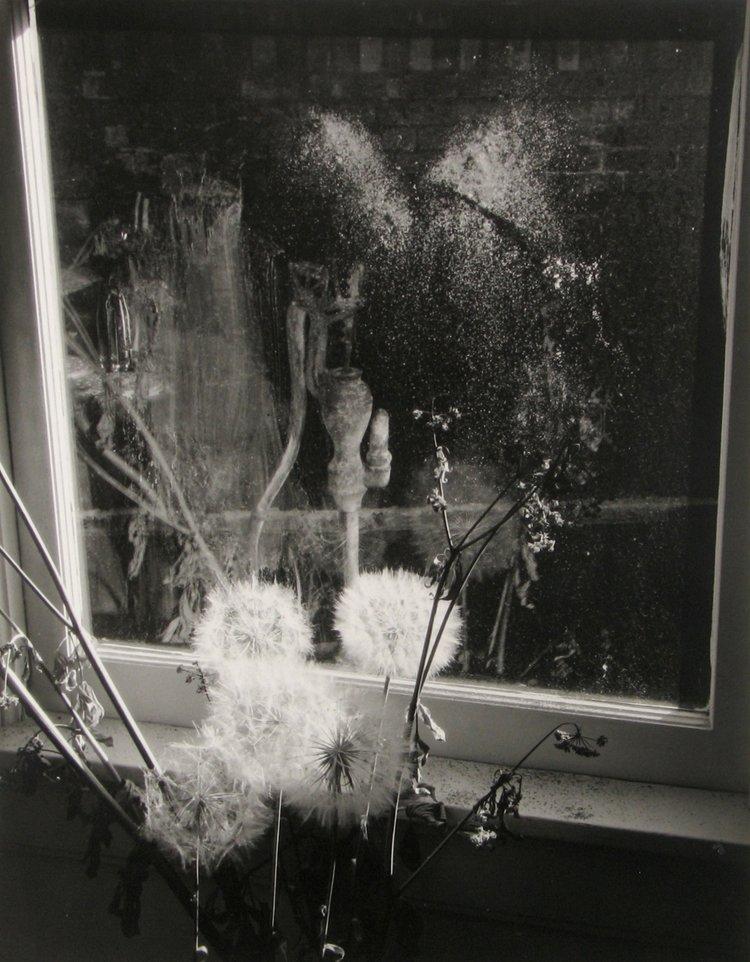 Minor White, 72. N. Union Street, (1958)