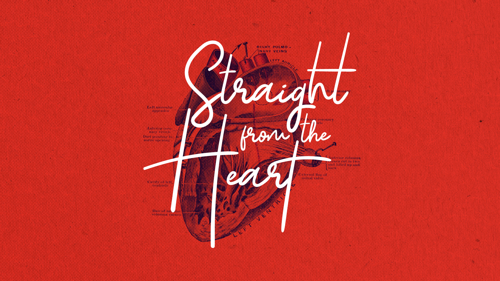May 2019 - Straight from the Heart