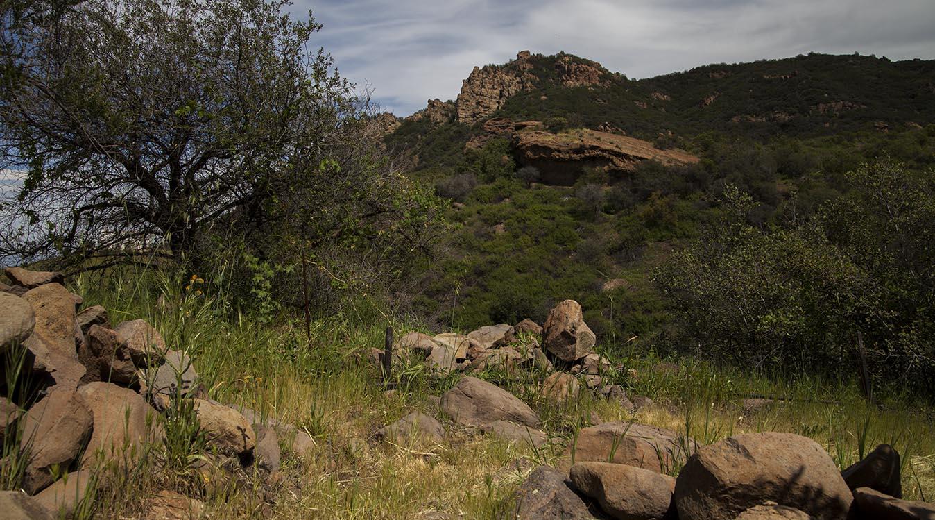 SHR Trail 6a.jpg