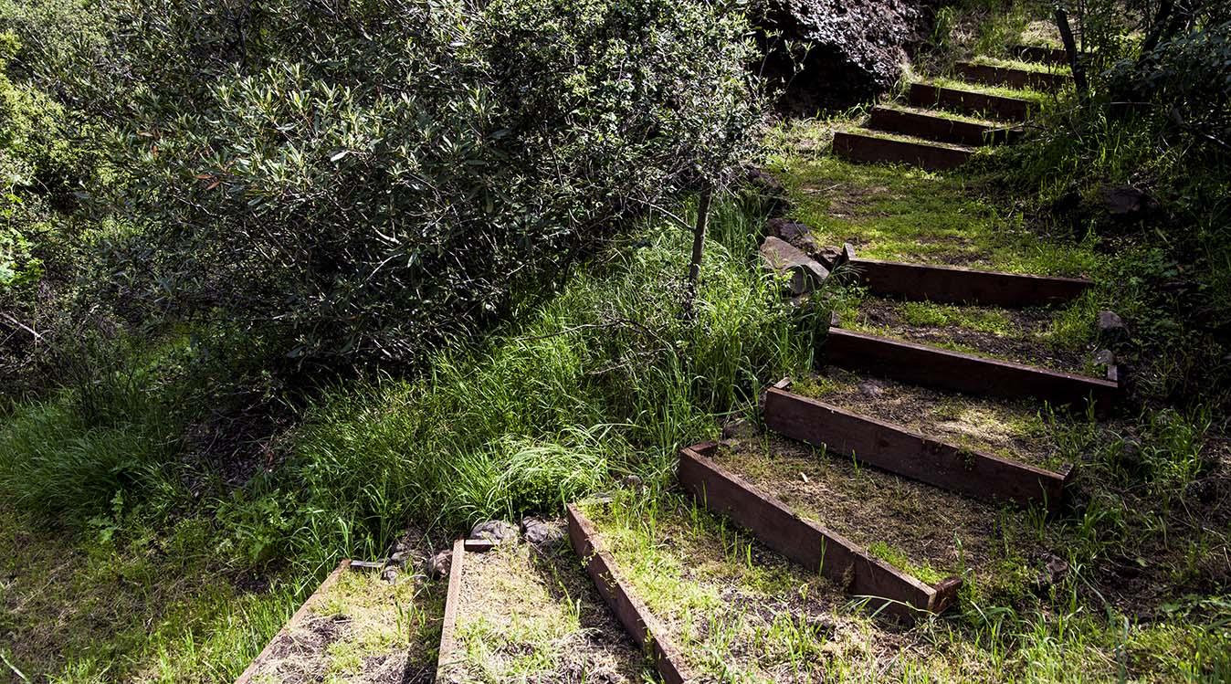 SHR Trail 1a.jpg