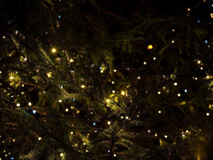 Tennessee Christmas - DECEMBER 10-16