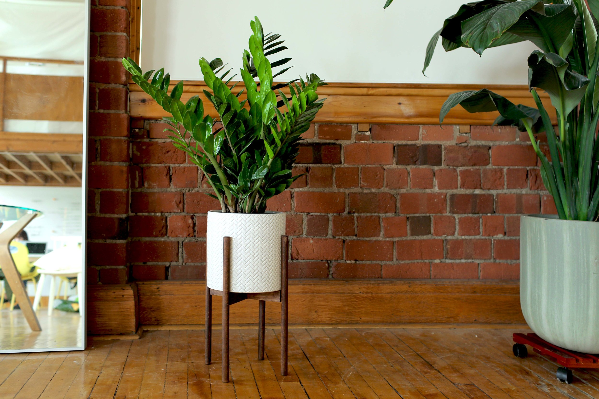 3ffff4383bfa DRAINAGE POT + PLANT STAND DIY — The Sorry Girls