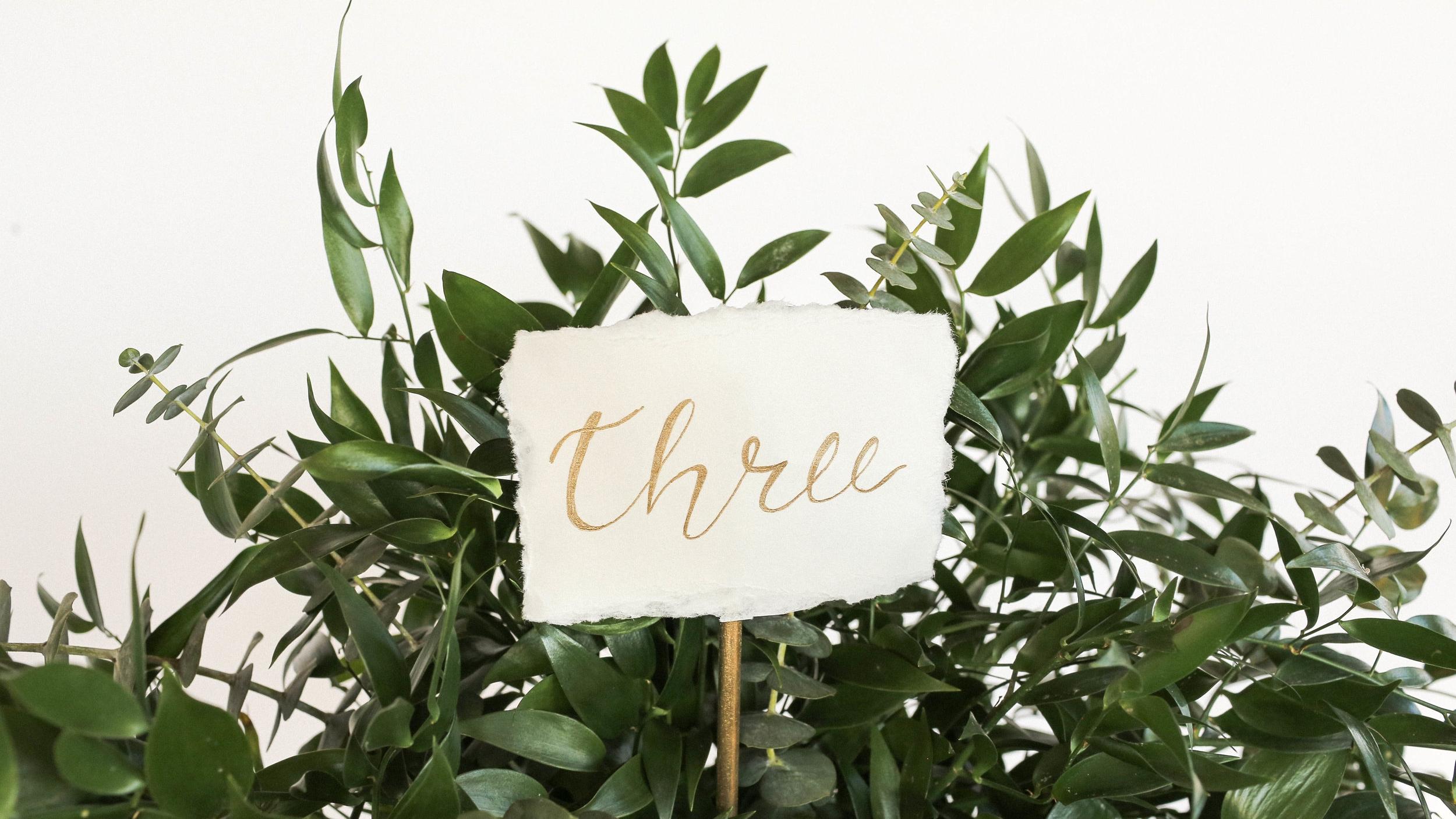 WeddingTableSettings-45.jpg