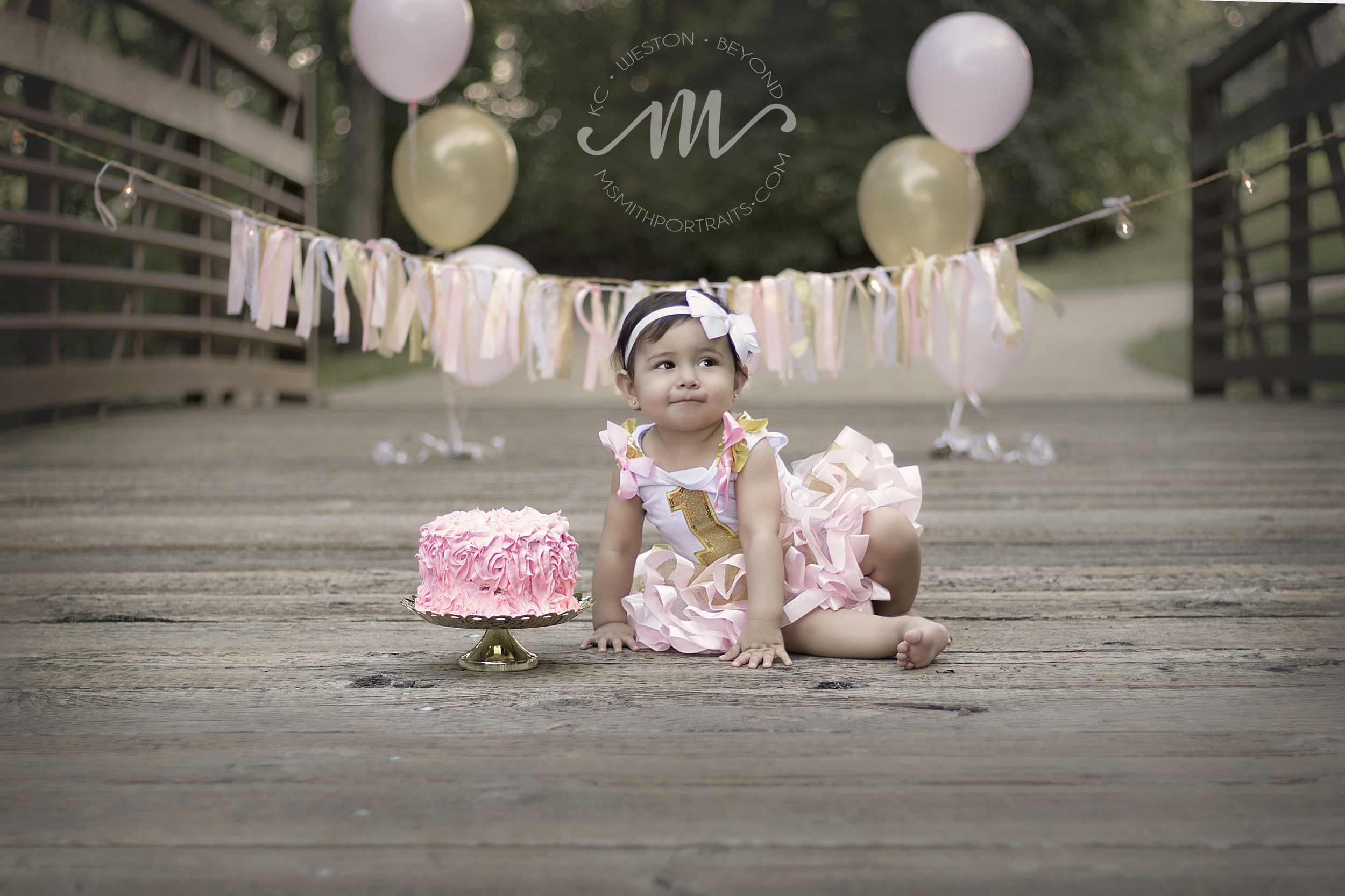First birthday cake photograph