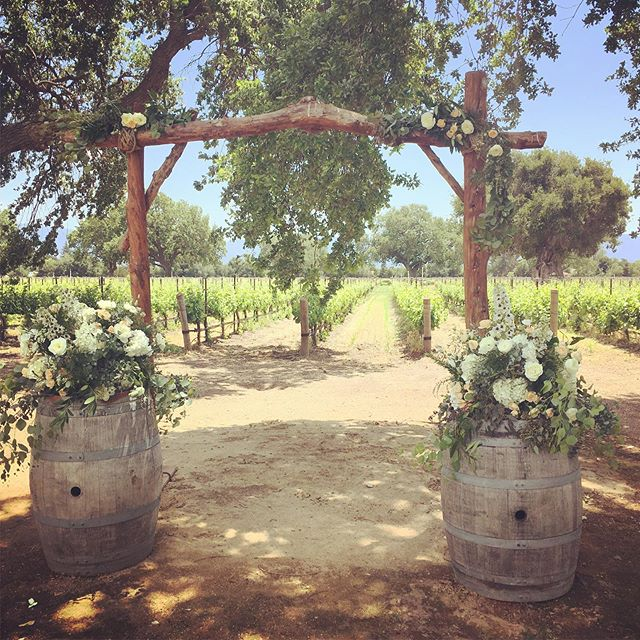 Can't beat a Roblar Wedding. #sbwedding #weddingday #wedding #weddingdesign #weddinginsperation #weddingflowers #diywedding #weddingstyle #santabarbarawedding #loveinsb #santabarbaraweddingflorist