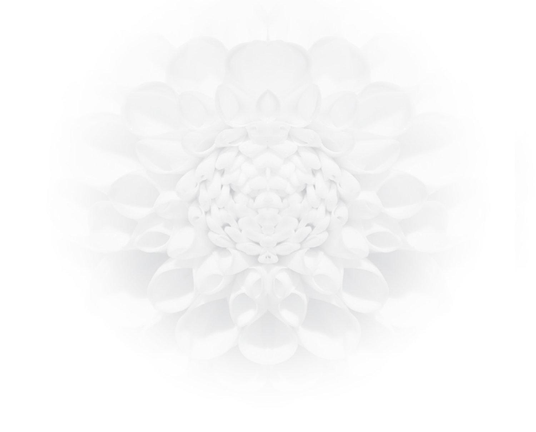 Carolyn+Flower.jpg