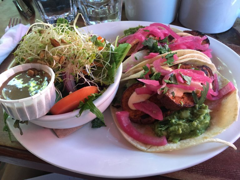 About to dive into some vegetarian tacos at the Treehouse Cafe.