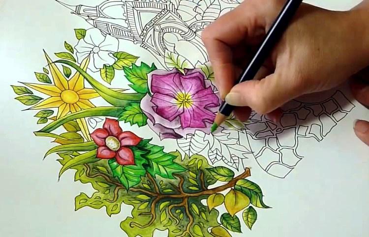 ColoringCatskills pic1.jpg