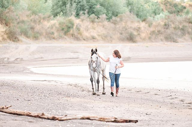 Meet Katy and Bob 😍! This dynamic duo is part of my Barn Ambassador program. Katy is a WONDERFUL woman and I am sooo glad I have the privilege to know her. Bob is a hoot, I LOVE his personality and he is also VERY handsome 🥰. Enjoy this sneak peek from their GORGEOUS beach session and be on the look out for more!! . . . . #pnwequine  #waequinephotography #waequinephotographer #washingtonequinephotographer  #horseandrider #wahorsephotography #equinegirlboss #equinelife #equinebeachphotography #nmpimages #equinephotographer #waequine #californiaequine #agirlandherhorse #horselifeirl #equinephotography #equestrianblogger #girlsandhorses