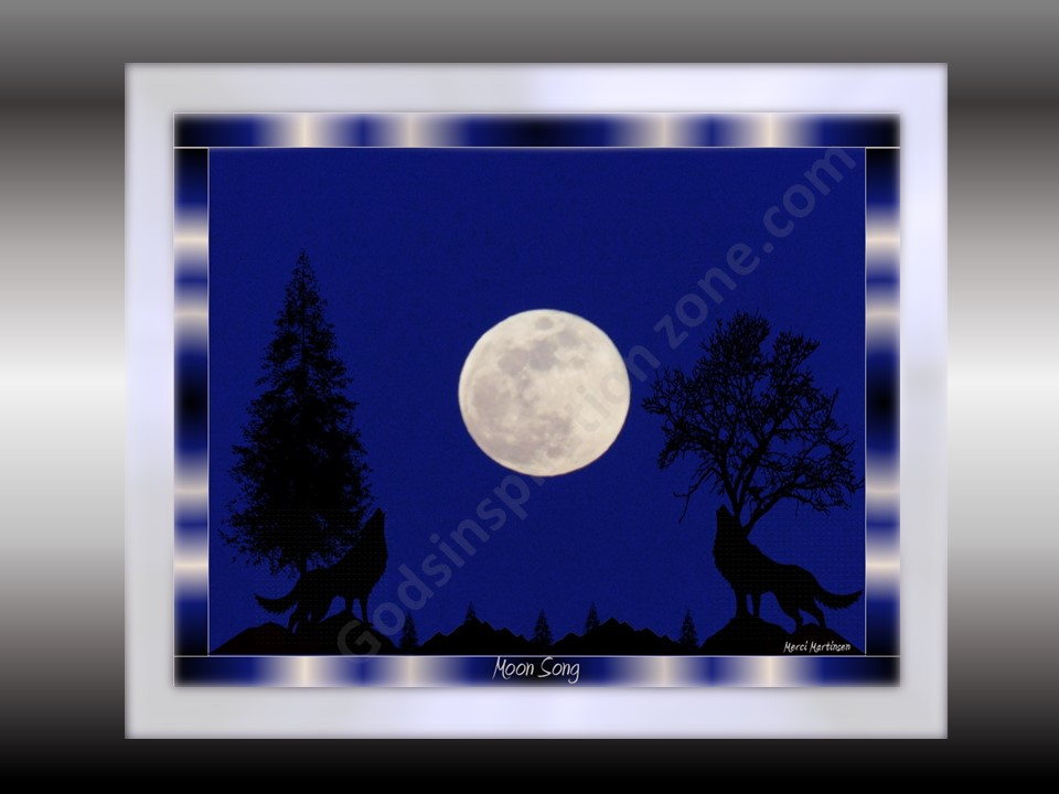 Moon Song: This photo was the actual color the Night I took it, Out at the old Pacific Railroad here in Brainerd, MN it was early evening. I added the art, of Wolves, Trees and Hills. #71