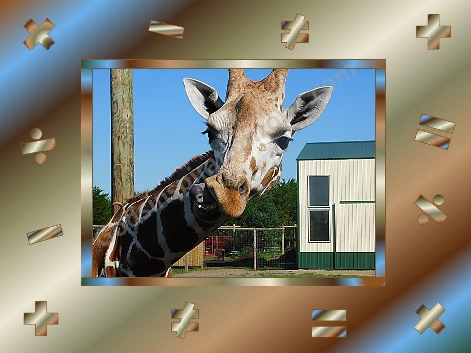Picture 78 Giraffee Math Symbols.jpg