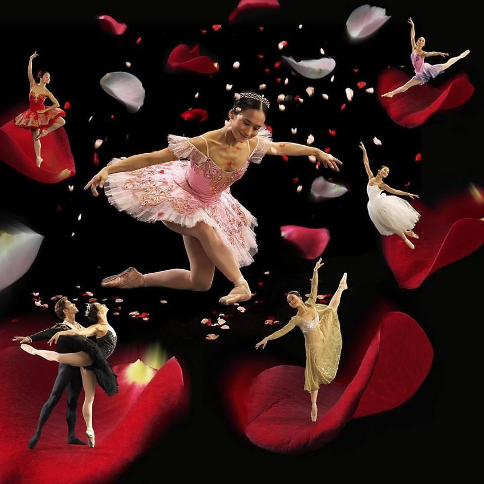 Dance+with+me+2002.jpg