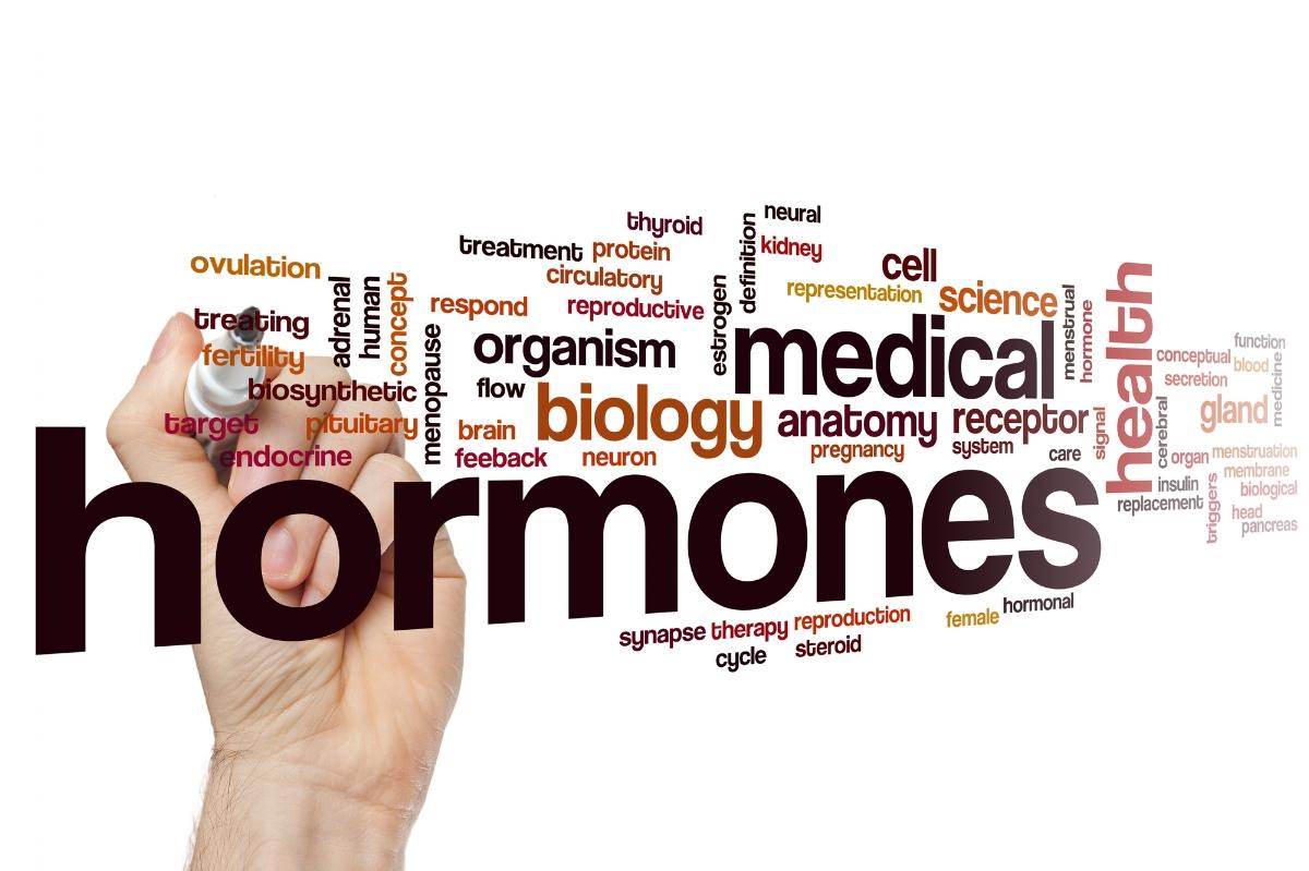 Estrogen - HRT - TRT