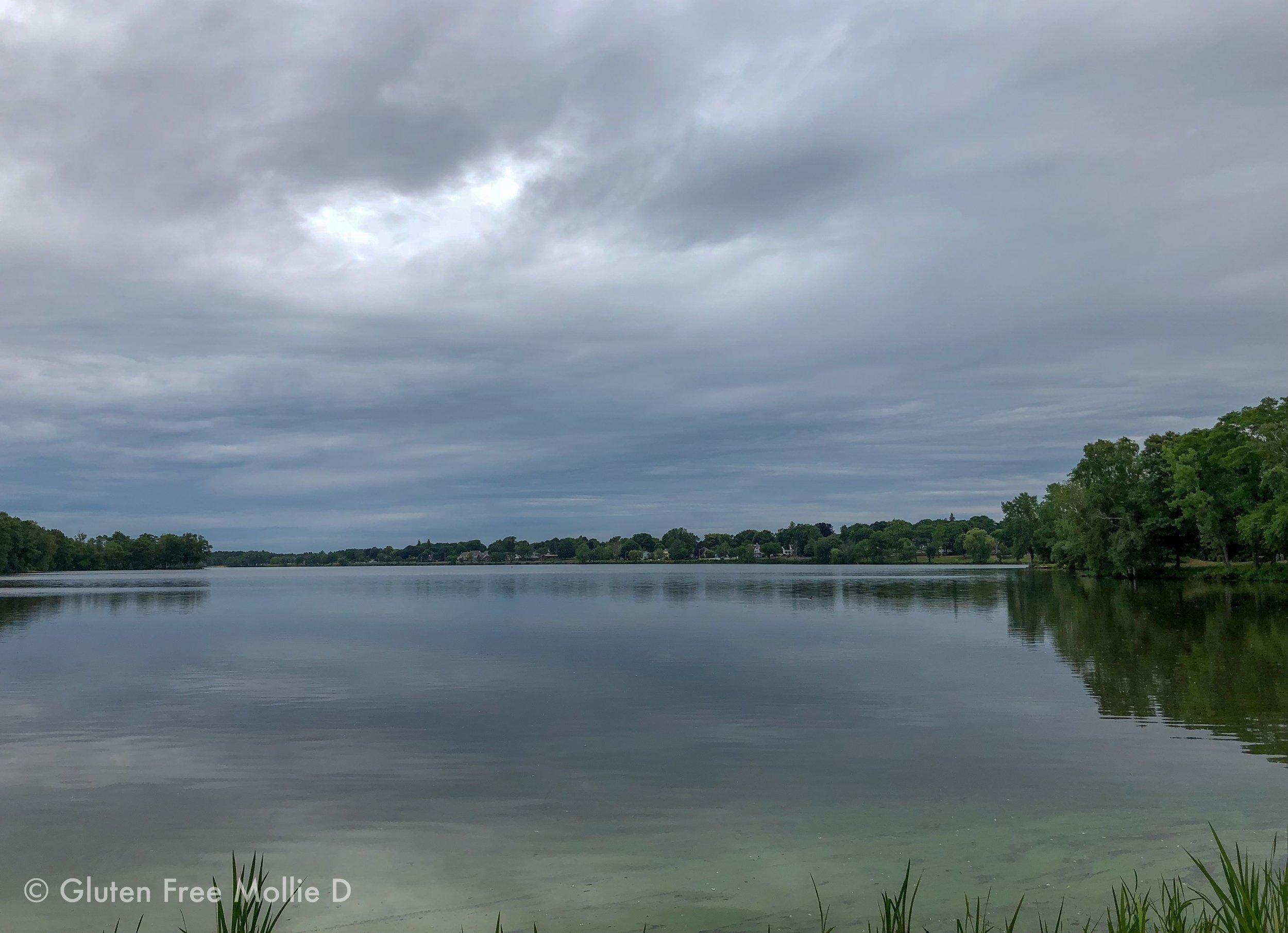 One of my favorite views during our weekend walks.