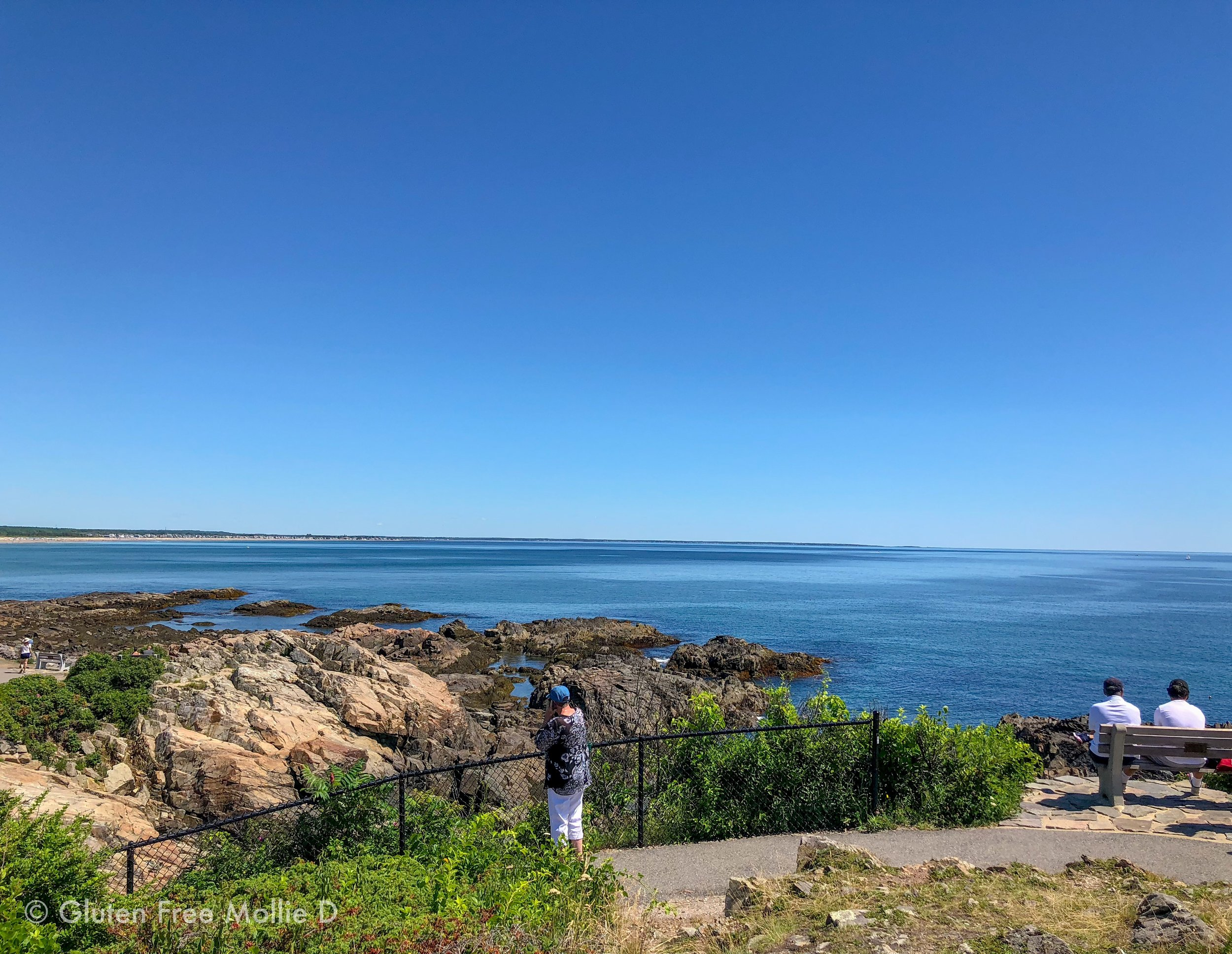 View along the Marginal Way which will bring you to Perkins Cove in Ogunquit.