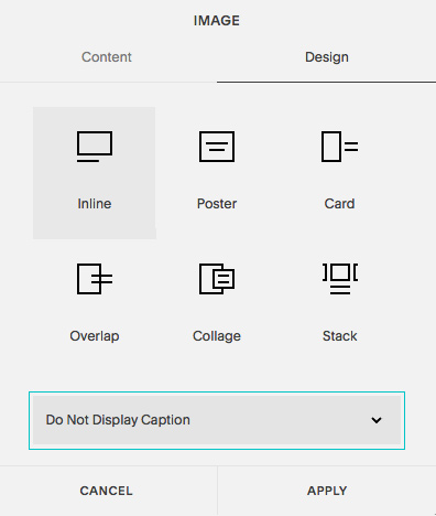 Squarespace - do not display caption
