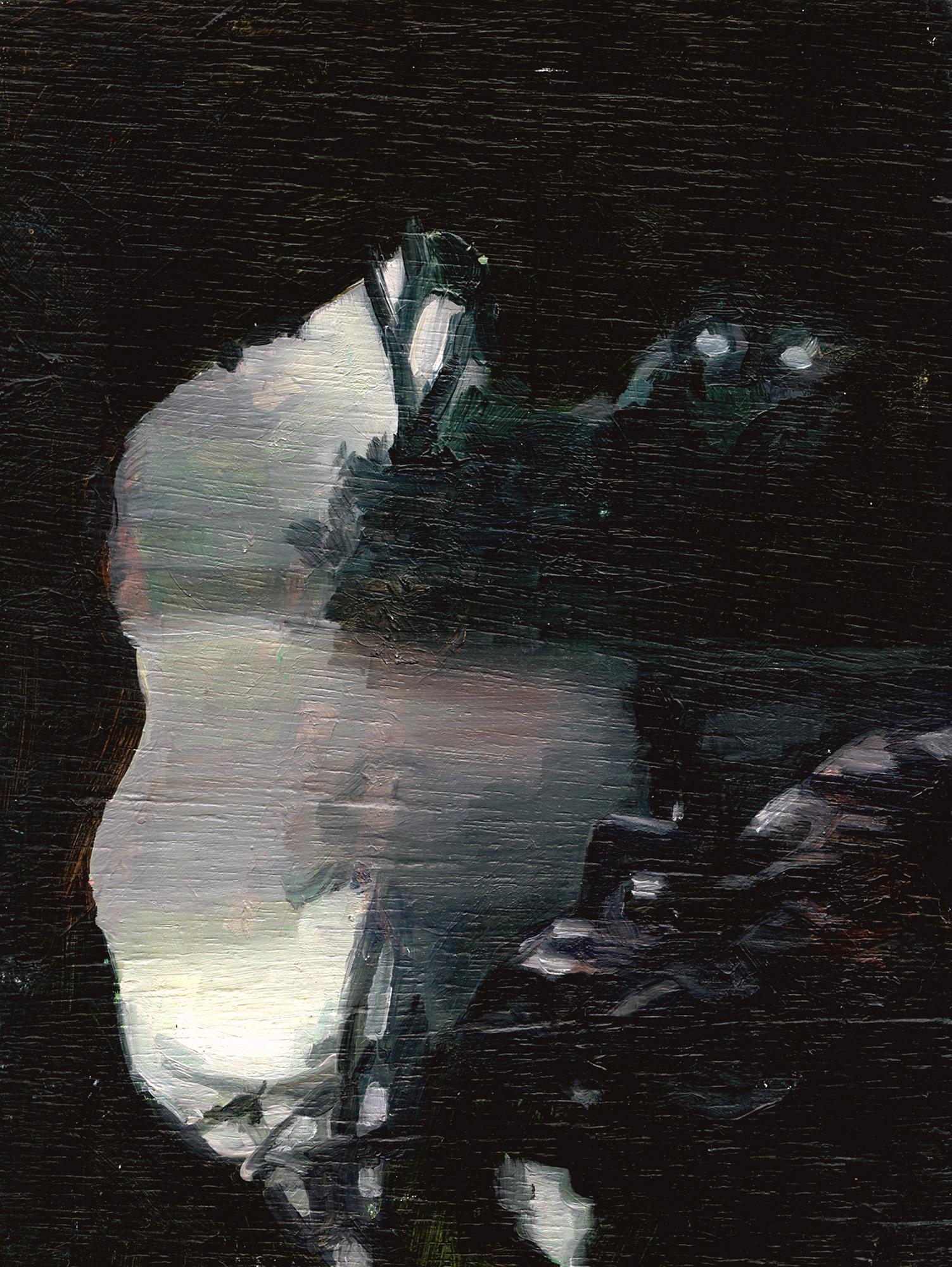 Dark Waterhole