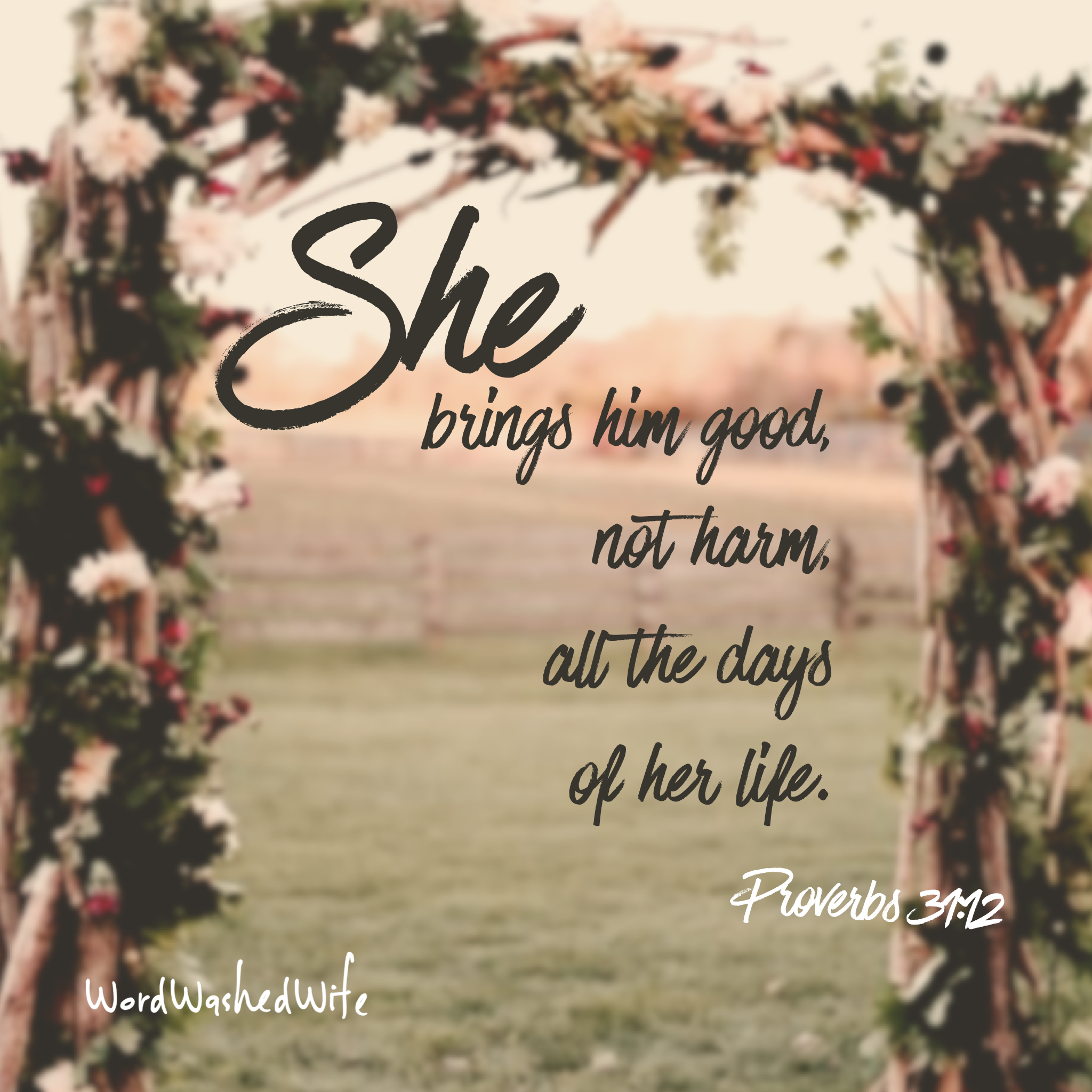 proverbs 31   12.PNG
