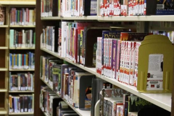 MC-shelves-YA-1.jpg