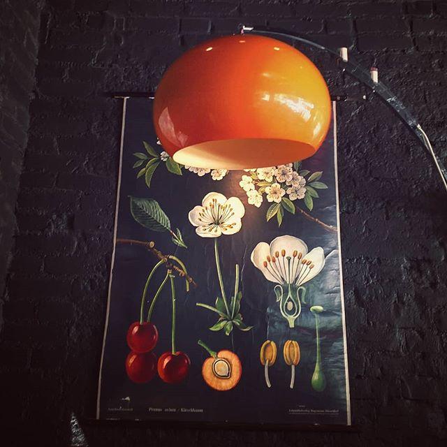 The art of botanical illustration (Wild Cherry) #color #orange #botanicalillustration #colorhunter . . . . . .  #vitalroot #denver #tennysonstreet #vegantravel #veganrestaurant #vintagebotanical #orangecolor #orangelight #colour #colorgram #igcolor #instacolor #colorlover #colorphotography #botanicalposter @vitalrootden