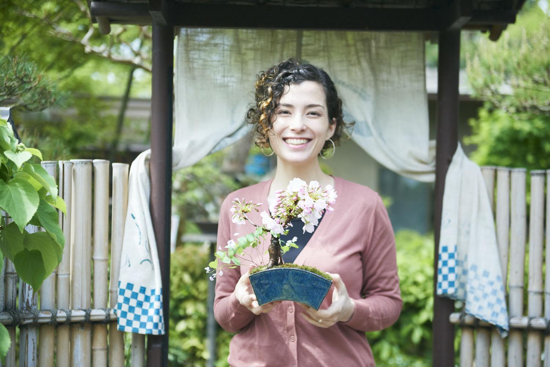 tokyo_bonsai_cherry_blossom_sakura_187.jpg