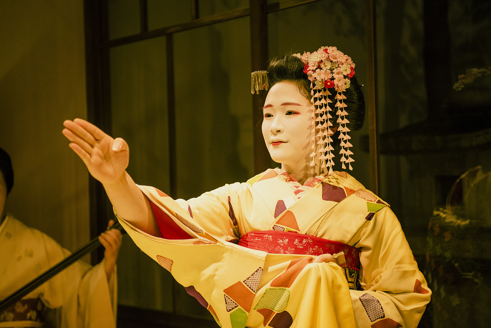 detouur_kyoto_geisha_enkai_dinner_152.jpg