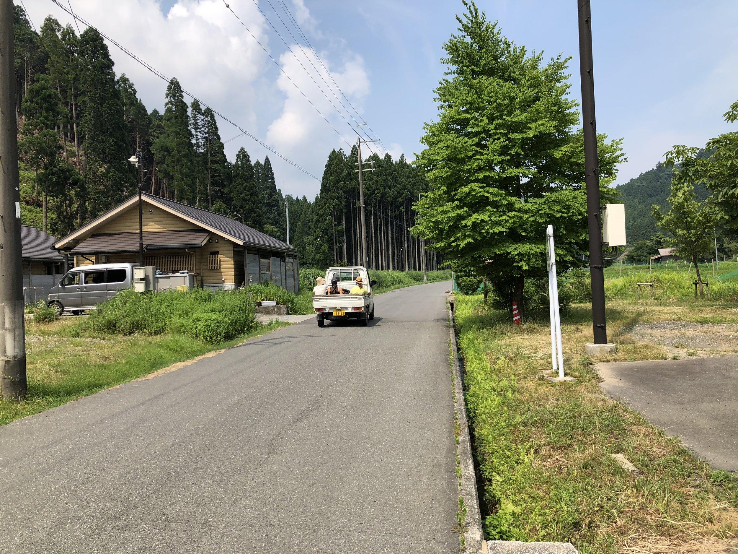 deeperjapan_kyoto_forest_trekking_customer_03.jpg
