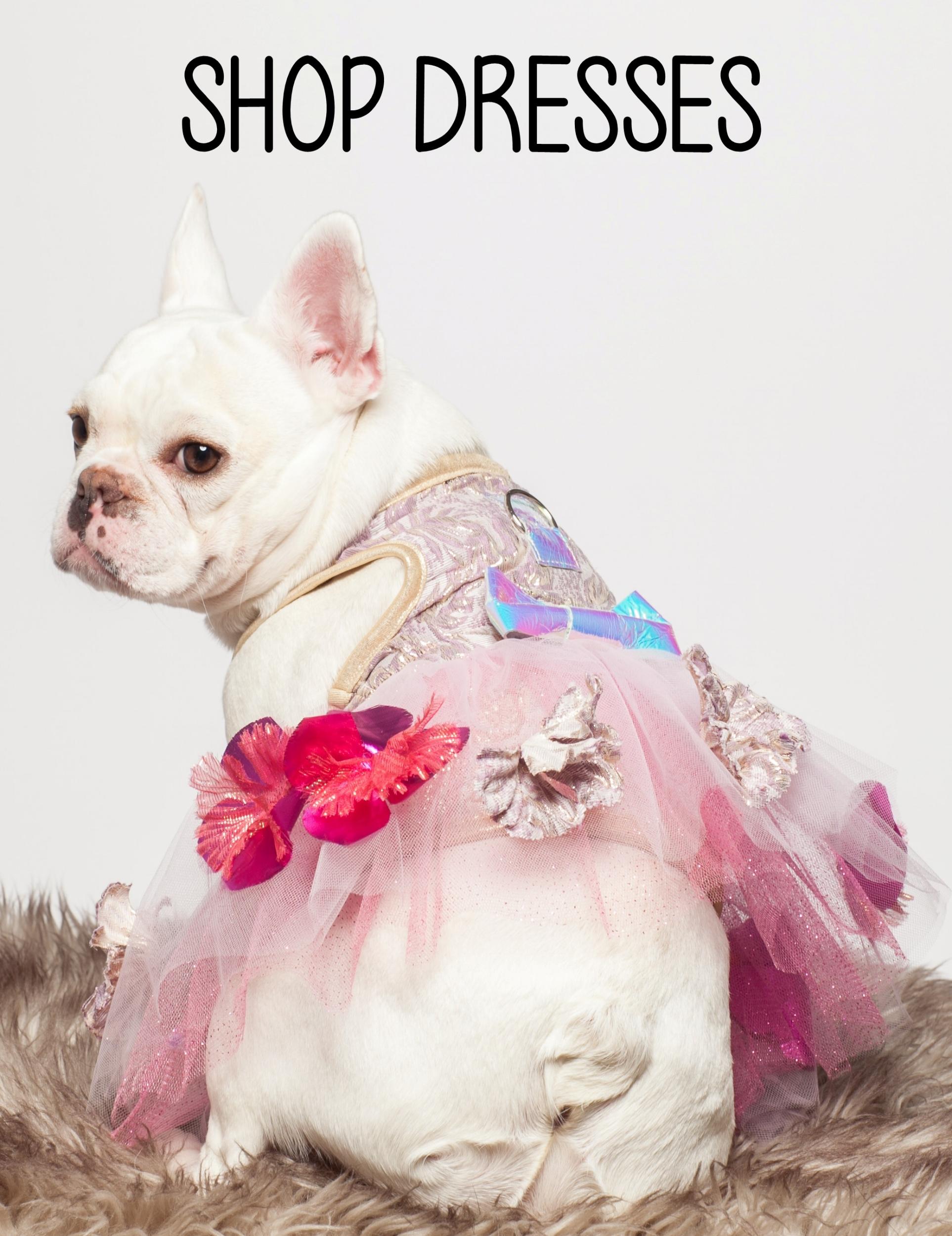 Shop dresses.jpg