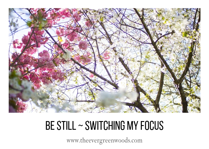 BE STILL _ SWITCHING MY FOCUS H.jpg
