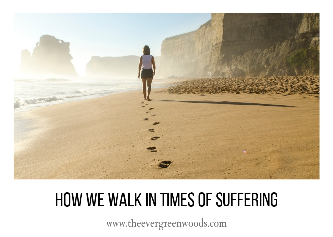 How We Walk In Times OF Suffering H.jpg