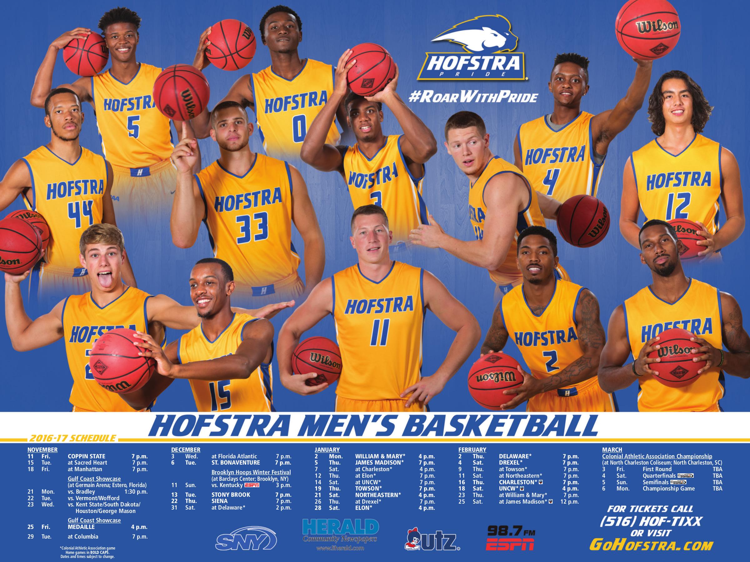 Hofstra Sport Poster