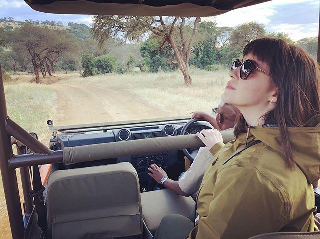 #tbt safari set 🦒 🐘 🐃 🦓 #africa #takemeback #travel #safari #globetrotting #wanderlust #tanzania #singita #wildlife 📸 @bsidell