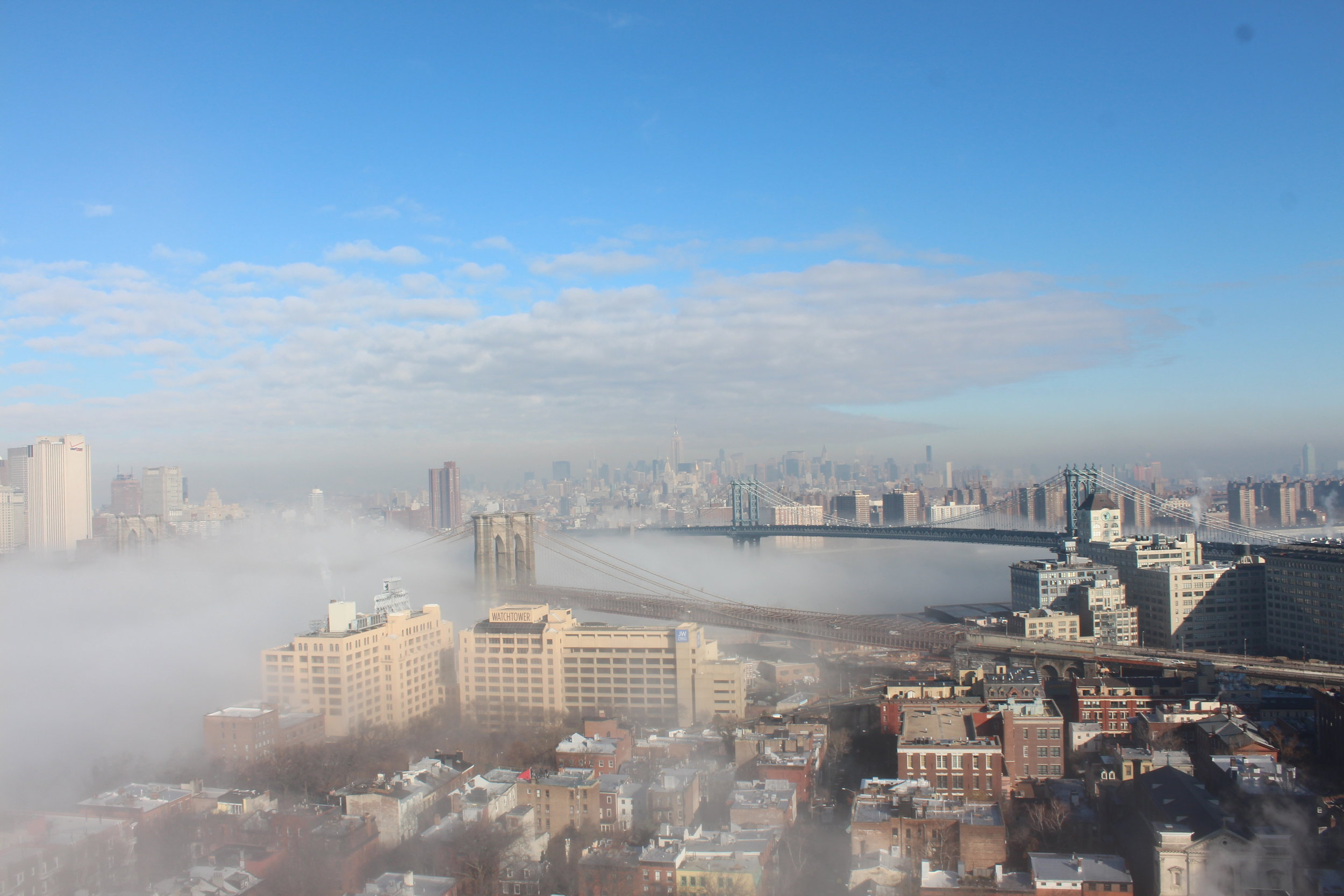During a Polar Vortex and ice fog enveloped New York.6.JPG